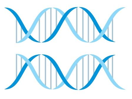 Badania genetyczne w diagnostyce poronień
