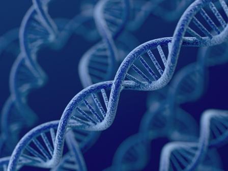 Badanie genetyczne dziecka po poronieniu