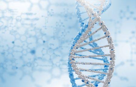 badania genetyczne materiału z poronienia